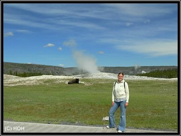 Old Faithful mit Bison