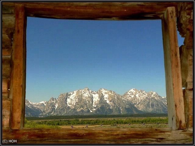 In der Cunningham Cabin ... Blick nach draußen