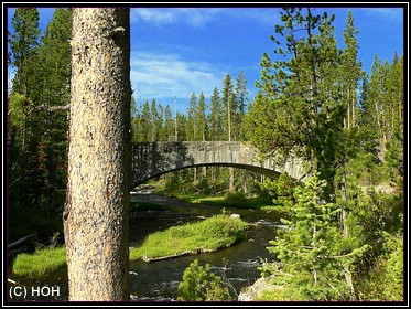 Moose Bridge